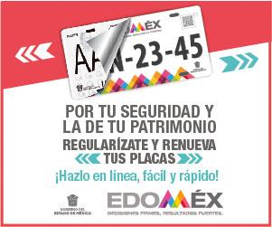 Reemplacamiento Estado de México