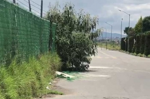 #Video: Foresta en #Metepec, inseguridad latente
